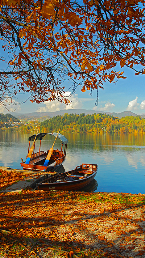 Admire panoramas of Bled through the eyes of Ana Če.